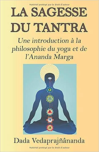 Amazon Com La Sagesse Du Tantra Une Introduction A La Philosophie Du Yoga Et De L Ananda Marga French Edition 9782907234047 Vedaprajnananda Dada Vedaprajinananda Dada Devii Jyotsna Books