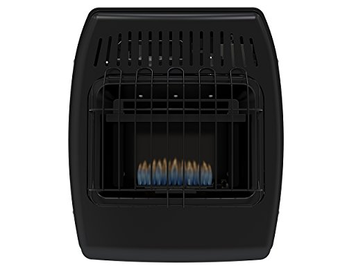 Dyna-Glo IBF10PMDG 10,000 BTU Liquid Propane Blue Flame Vent Free Ice House Heater (House Wall Heater compare prices)