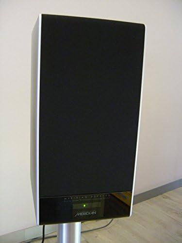 Meridian DSP 3100 - Altavoz activo, color plateado: Amazon.es: Electrónica