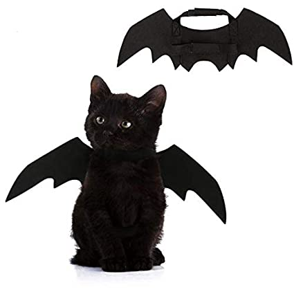 Amazon.com : HBK Funny Cats Cosplay Costume Halloween Pet Bat Wings Cat Bat Costume Fit Party Dogs Cats Playing Pet Cats Products for Gatos : Pet Supplies