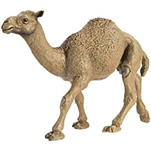 Safari Ltd  Wild Safari Wildlife Dromedary Camel