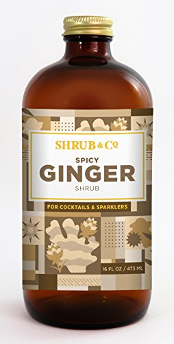 spicy-ginger-shrub-cocktail-mixer-drinking-vinegar
