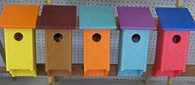 Secret Bird Watcher Birdhouse