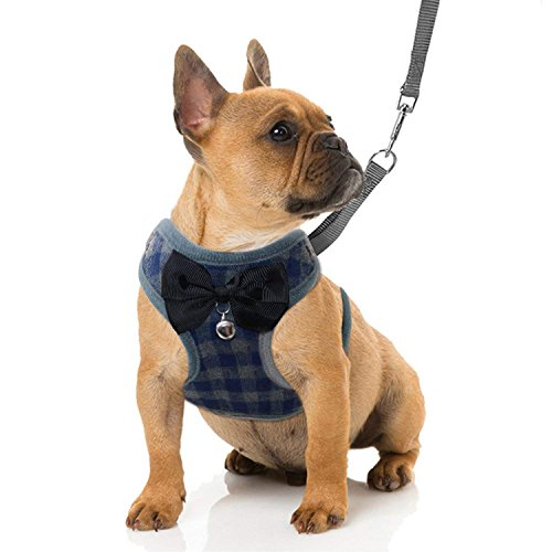 RYPET Small Dog Harness and Leash Set - No Pull Pet Harness with Soft Mesh Nylon Vest for Small Dogs and Cats Blue M