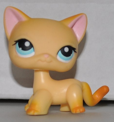 Shorthair Cat #339 (Orange, Blue Eyes, Rust Tail) Littlest Pet Shop (Retired) Collector Toy - LPS Collectible Replacement Single Figure - Loose (OOP Out of Package & Print)