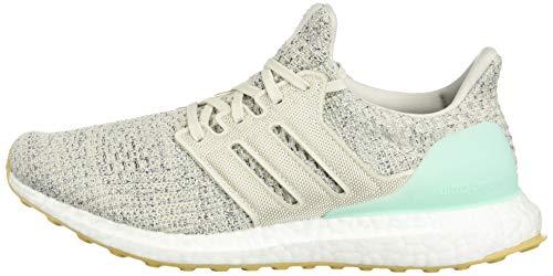 d07422679e adidas Women's Ultraboost, Clear Mint/raw White/Carbon, 5 M US | Art ...