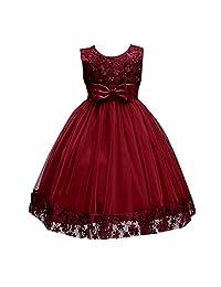 dressfan Kids Party Flower Girl Lace Tulle Floral Dress