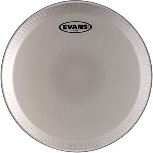 Evans Tri-Center Conga Head, Fits LP 12-1/2 Inch Professional Series by Evans