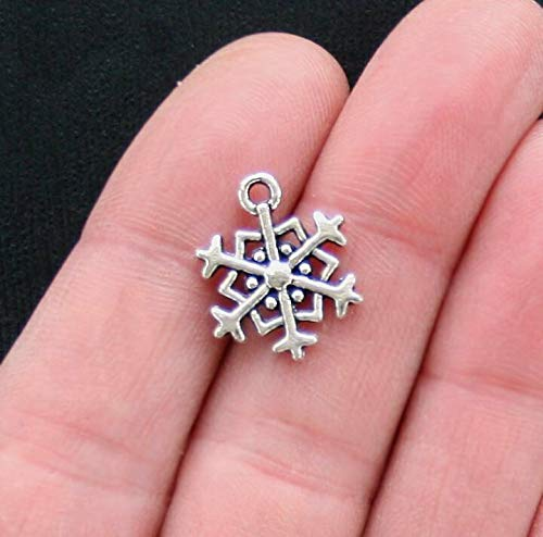 10 Snowflake Charms Antique Silver Tone 2 Sided SC2893