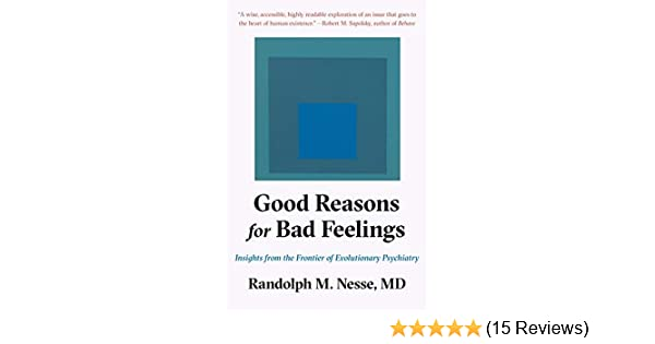 Good Reasons for Bad Feelings: Insights from the Frontier of ...
