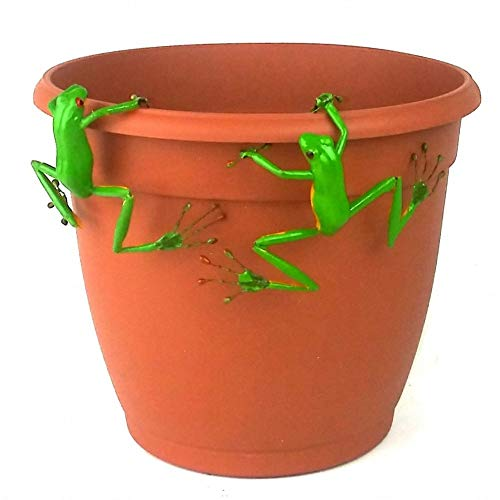 Red Eyed Tree Frog Thin Pot Sitter Hanger (Set of 2)