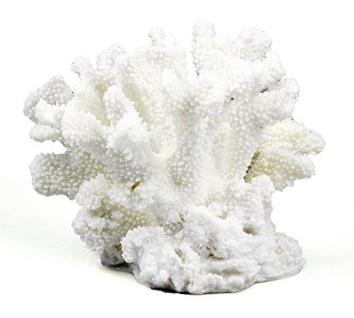 COMLZD Branch Coral Sculpture for Aquarium or Tabletop Decor, Home Office Decorative Nautical Decor Collection 9 by 6 by 7 inch