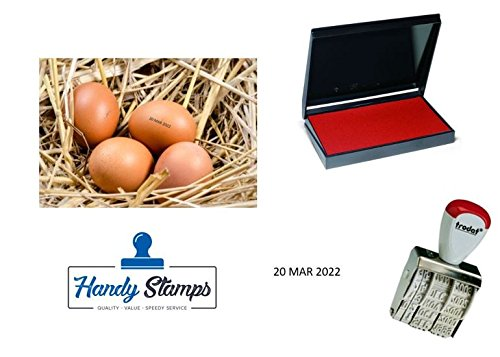 Egg Dater KIT - Includes 3mm Rubber Date Stamp and Ink pad Containing Egg Safe Food Ink - RED (Date Stamp Kit)