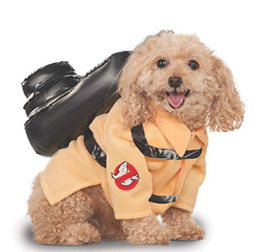The Cutest Halloween Pet Costumes (for Under $30) - cover