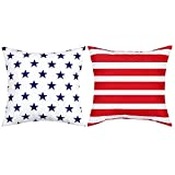 BLEUM CADE Independence Day Throw Pillow Cover Stars and Stripes Pillow Covers Set of 2 Decorative Pillow Case for Independence Day Sofa Couch Chair Bedroom Office Car