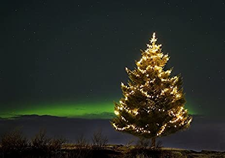 iceland christmas tree decorated with lights with northern lights in background 12x16 photo reprint