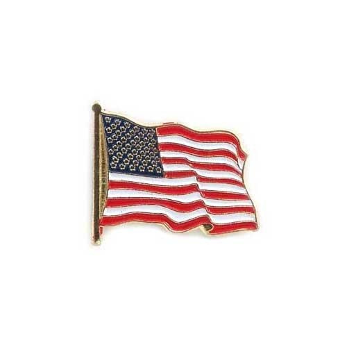 US Flag Store USA Lapel Pin Standard (Us Flag Pins)