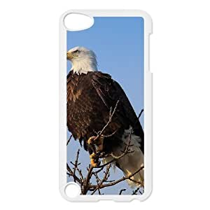 Bald Eagle Classic Personalized Phone Case for Ipod Touch 5,custom cover case ygtg578544