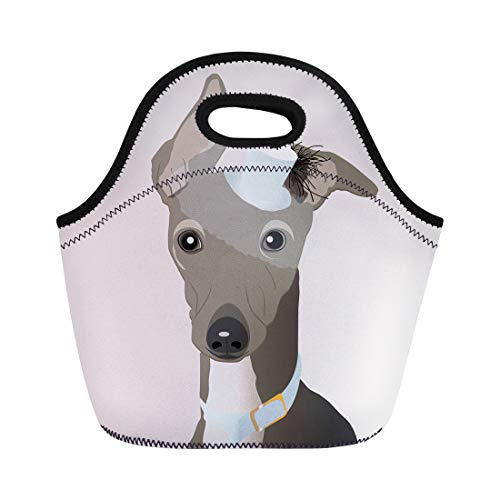Semtomn Neoprene Lunch Tote Bag Animal Italian Greyhound in Hat Veil Bonnet Breed Cartoon Reusable Cooler Bags Insulated Thermal Picnic Handbag for Travel,School,Outdoors,Work ()