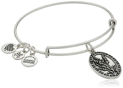 Alex Ani Rafaelian Bangle Bracelet