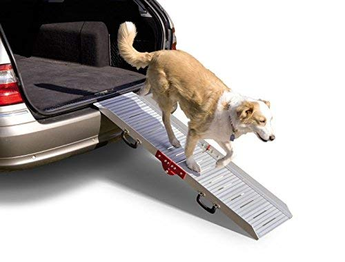 Nobby alluminio Dog rampa
