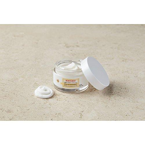 Burt's Skin Nourishment Night Cream for to Combination Skin 1.8