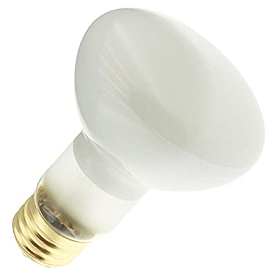 Industrial Performance 45R20 130V, 45 Watt, R20, Medium Screw (E26) Base Flood Light Bulb