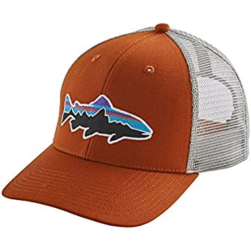 reliable Patagonia Fitz Roy Trout Trucker Hat
