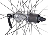 Capstone 29 inch Alloy Rear Wheel QR 36H Cassette