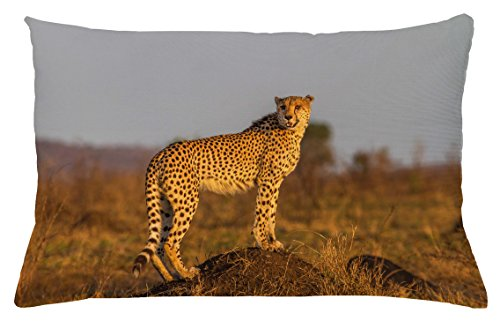 Ambesonne Safari Throw Pillow Cushion Cover, African Wild Animal Cheetah Standing on Termite Mound Savannah Nature View, Decorative Accent Pillow Case, 26 W X 16 L inches, Ginger Apricot Dust