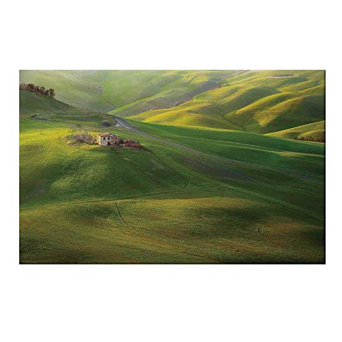 YOLIYANA Tuscan Durable Door Mat,Tuscany Hills Sunset Scenery Green Meadow Agriculture Country Farm House Theme for Home Office,19.6