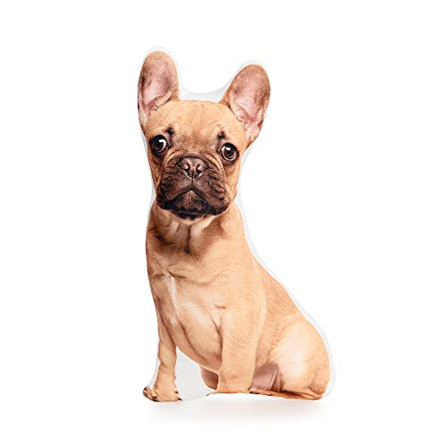 Cushion Co - French Bulldog Tan Shaped Pillow 16'' x 12'' by Cushion Co