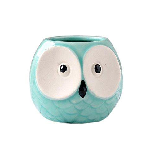 Better-Way Colorful Owl Pot Ceramic Succulent Plant Container Cactus Planter Flower Pot Container Planter with Holes Decorative Ceramic Cute Animal (Tiffany ()