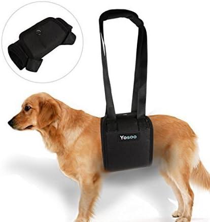 Portable Perro Levantamiento Arnés de Apoyo - Perro Ayuda con ...