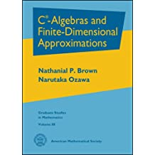 C-Algebras and Finite-Dimensional Approximations