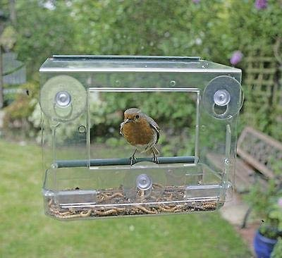 Garden mile® Unique Clear Hanging Perspex Squirrel proof Window Bird Feeder glass viewing bird feeding station table seed or peanut with hanging suction cups