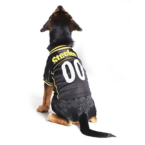 julian edelman dog jersey