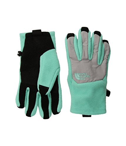 The North Face Girls' Youth Denali Etip Glove - Bermuda Green/Metallic Silver,