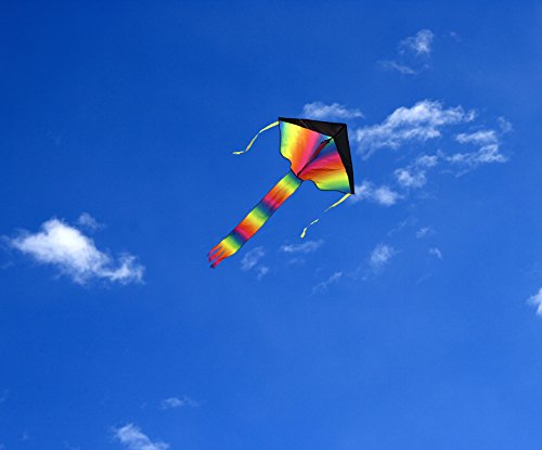 Large Delta Kite/Rainbow Kite (200' of Line) - Easy to Assemble, Launch, Fly - Premium Quality, One of the Best Kites for Kids/Kites for Adults - Great Beginner Kite Impresa(TM) by Impresa Products (Image #5)