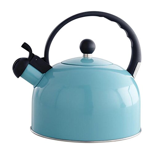 Enamel Tea Kettle with Heat Resistant Handle and Lid - 2.6 Quart