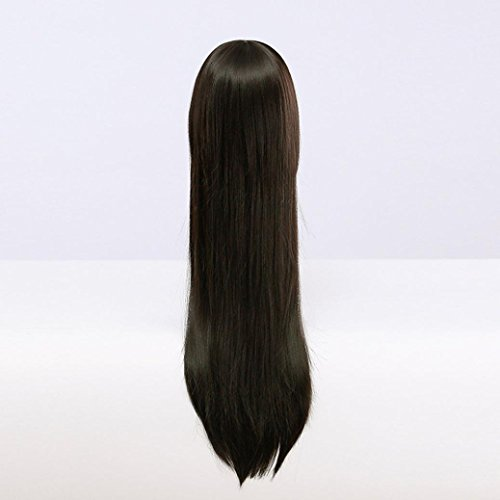 Women Wigs, Anshinto Womens Long Straight Hair Cosplay Costume Party Full Natural Wigs (Black)