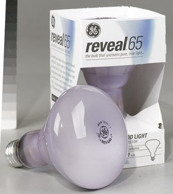 Reveal 65 Watt Flood Light - 2