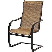 Pleasant Sale Agio International Adh10019K01 Bellevue Spring Chair Ibusinesslaw Wood Chair Design Ideas Ibusinesslaworg