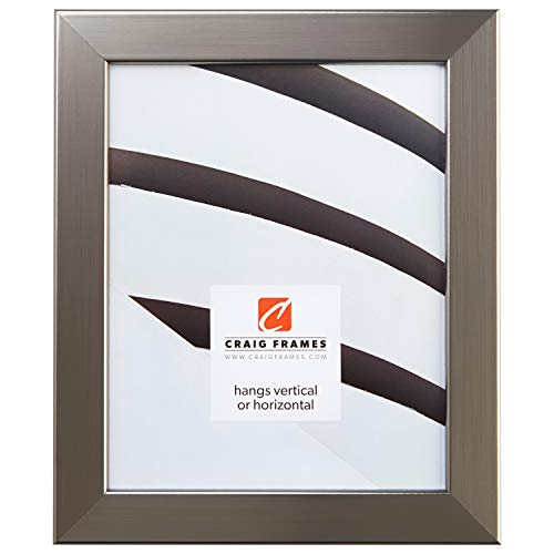 Craig Frames 26966 22 x 28-Inch Picture Frame, Smooth Wrap Finish, 1.26-Inch Wide, Silver Stainless
