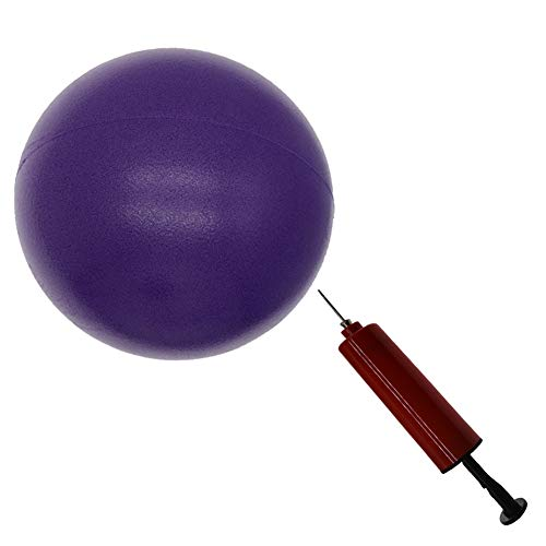 X&W 8 inch Exercise Ball, Small Exercise Ball Mini Yoga Ball, Pilates Ball 8 in with Needle Pump, Core Ball Barre…