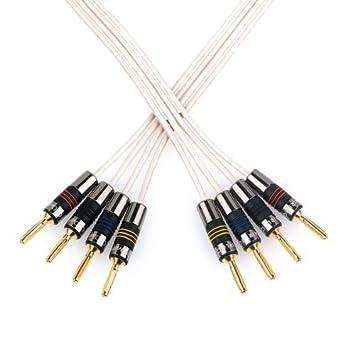 QED Original Bi-wire Speaker Cable - 2m Terminated Pair: Amazon.co ...