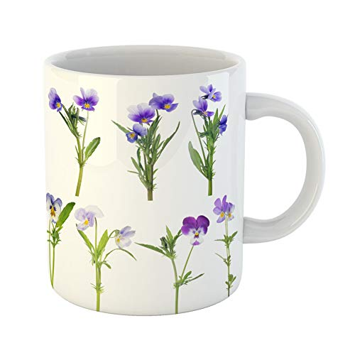 Emvency Coffee Tea Mug Gift 11 Ounces Funny Ceramic Blue Bloom Pansy Flowers Collection Purple Closeup Gifts For Family Friends Coworkers Boss Mug