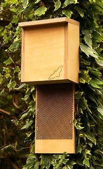 Bat Nesting and Roosting Box. Wooden.
