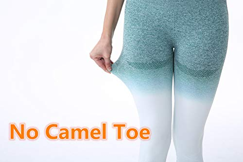 BLENDNEW Yoga Pants for Women High Waisted Gym Sport Ombre Seamless Leggings/Power Stretch Running Workout Leggings