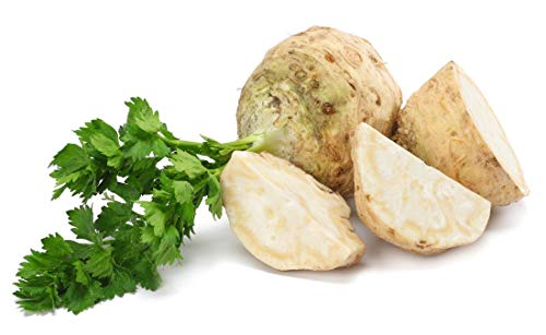 150+ ORGANICALLY GROWN GIANT Prague Celeriac Seeds Heirloom NON-GMO Root Knob, Delicious and Flavorful, From USA